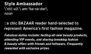style ambassador definition